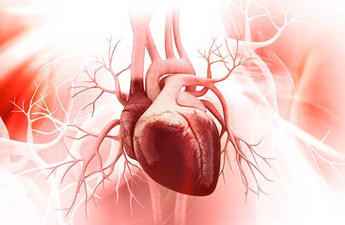 aortosclerosi cause e cure